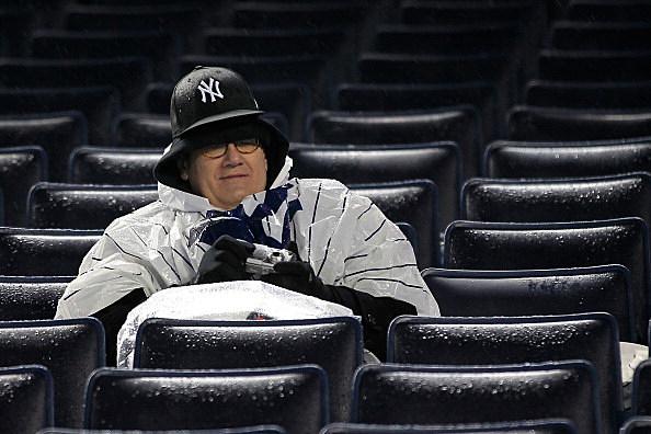 New York Yankee Fan